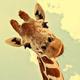 多摩動物公園の広い敷地を子どもとたくさん歩こう☆【東京都】