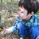 南伊豆、一条竹の子村でたけのこ狩り!旬の味覚を味わおう|静岡