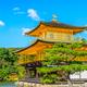 京都に行ったら寄りたい!お座敷や個室で子連れランチ3選