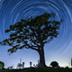 国立天文台 三鷹キャンパスで月や星を観測!絵本の家も|三鷹市