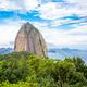 ブラジル子育て奮闘記(4) マザコン大国の心温まる母の日