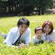 動物に会える!東海市・大池公園で桜や花火を楽しもう|愛知県