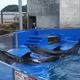 九州・沖縄の水族館|ふれあい体験やショーなど人気の11選