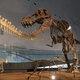 福井県立恐竜博物館で化石発掘体験ツアーも、恐竜グルメも!?