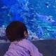 海の生物がたくさんの鳥羽水族館!あのダイオウグソクムシも|三重県