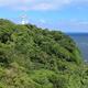子連れで横須賀観光!自然を楽しむおすすめスポット3選!l 神奈川県