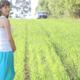妊娠後期の運動にウォーキング、どれくらいすれば|専門家の見解