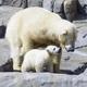 北海道で子連れにおすすめの動物園4選!動物とふれあい体験も!
