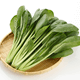 離乳食の小松菜はいつからOK?下ごしらえや冷凍保存、初期~後期レシピも