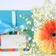 出産祝いに花!色、花言葉、マナーは?アレンジメントギフトなど11選
