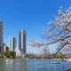 上野公園で遊んでランチ!子連れで満喫おすすめスポット|東京都