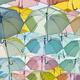 UVカット日傘の選び方|遮光?晴雨兼用?折りたたみ&軽量も