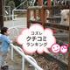 おすすめ動物園の口コミランキング ~1歳編【2018年12月】