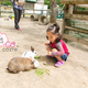 おすすめ動物園の口コミランキング ~4歳編【2019年1月】