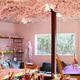 春のインドア花見特集|室内で快適お花見パーティーを楽しみませんか?