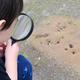 好奇心を育てよう!赤ちゃんから3歳頃まで長く楽しめる図鑑9選【0~3歳向け】