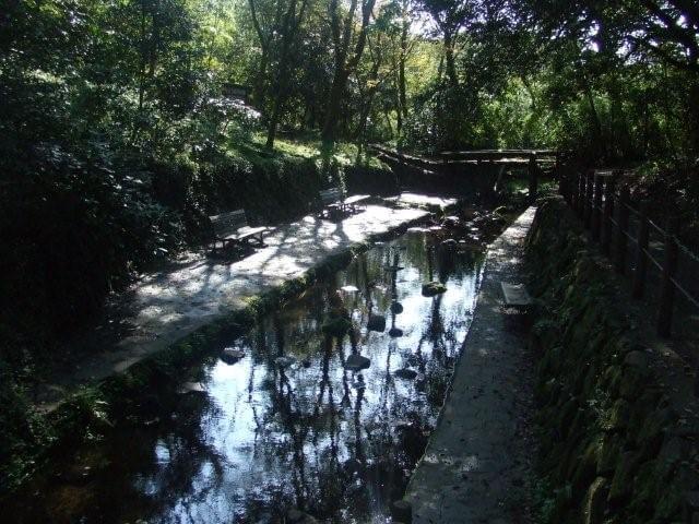 柿田川公園湧水広場,じゃぶじゃぶ池,静岡県,おすすめ