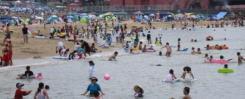 淡輪海水浴場 「ときめきビーチ」,大阪,おすすめ,海水浴場