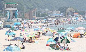 山海海水浴場,海水浴場,愛知県,人気