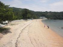 桂浜海水浴場,広島,海水浴場,おすすめ
