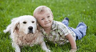 子どもと犬,子ども,犬,アレルギー