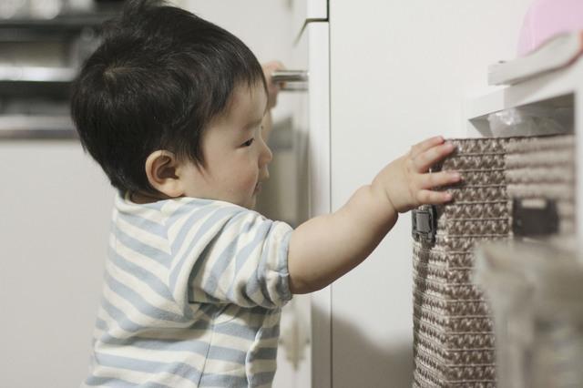 棚のものを取ろうとする子ども,産後,11ヶ月,