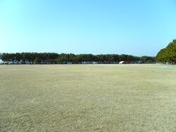 オートキャンプ場,静岡,キャンプ場,