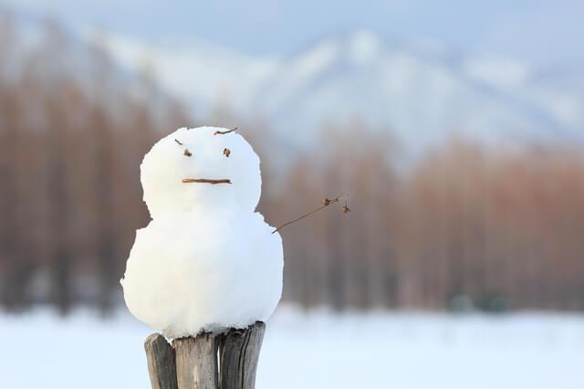 冬 雪だるま,子連れ,おでかけ,スポット