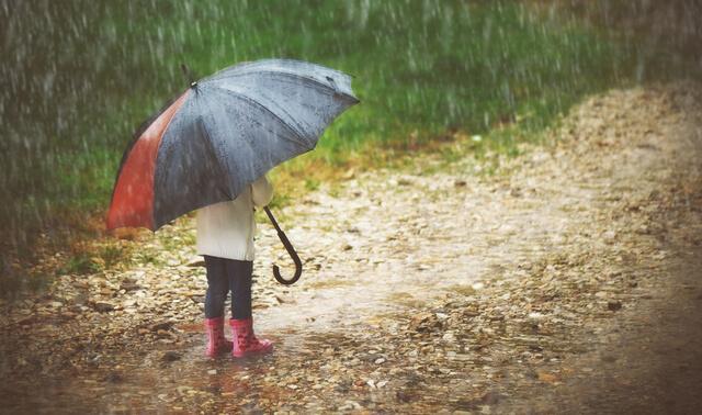 雨の日 傘,子連れ,おでかけ,スポット