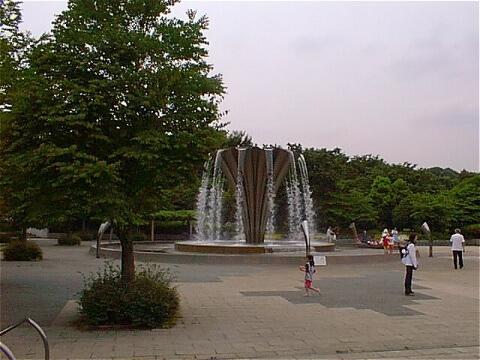 赤塚公園,公園,水遊び,東京