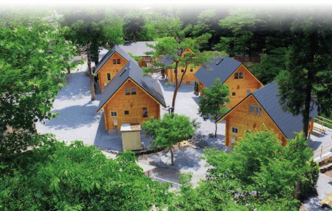 アメリカキャンプ村の宿泊,キャンプ ,初心者,