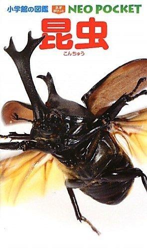 昆虫 (小学館の図鑑 NEOポケット),虫,図鑑,