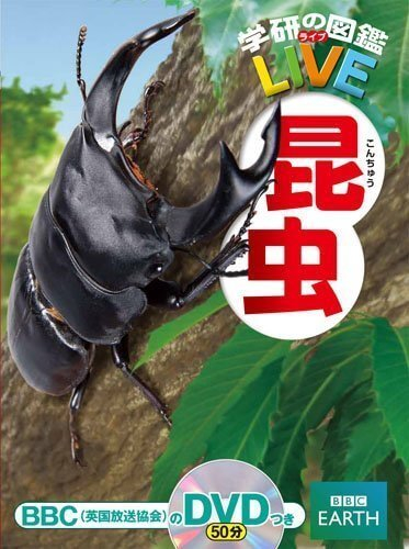 昆虫 (学研の図鑑LIVE(ライブ)),虫,図鑑,