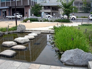 桜井公園,京都,おすすめ,スポット