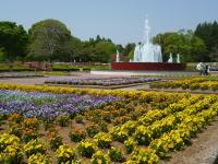茨城県植物園,茨城,植物園,おすすめ