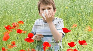 アレルギーの子ども,ハウスダスト,アレルギー,