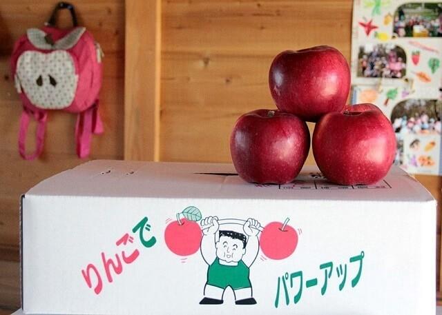 段ボール箱の上のりんご,秋,味覚狩り,