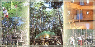 ながた自然公園,長野,アスレチック,自然