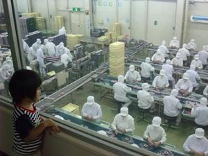 工場内部,桔梗屋,工場見学,