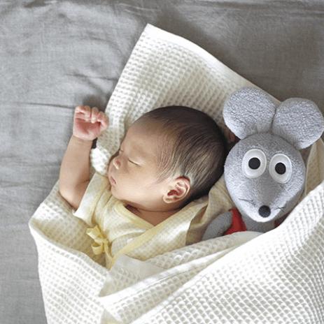 新生児の赤ちゃん,子ども,記念撮影,