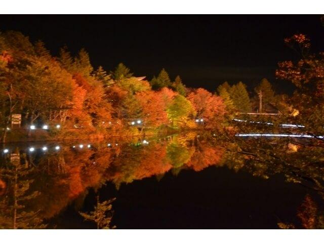茶臼山の紅葉,愛知,紅葉,