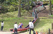 県立 三ツ池公園公式ホームページ,アスレチック,横浜,