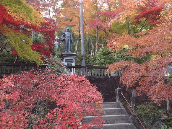 東郷公園,紅葉,埼玉,