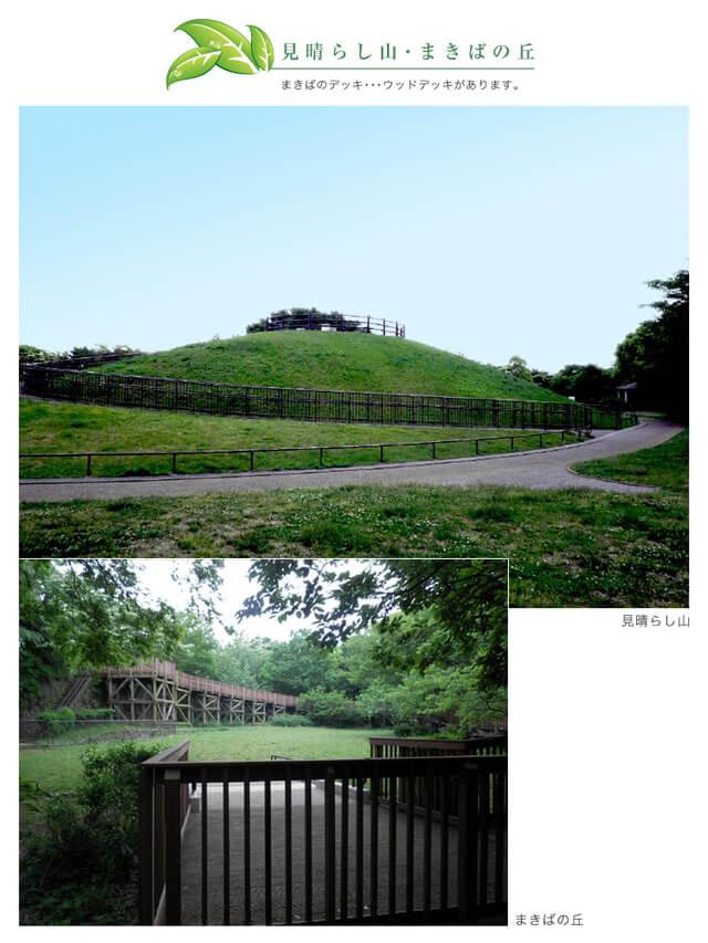 本牧山頂公園の見晴らしの丘・まきばの丘,ピクニック,公園,神奈川