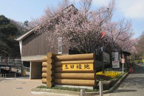 生田緑地の東口ビジターセンター,ピクニック,公園,神奈川