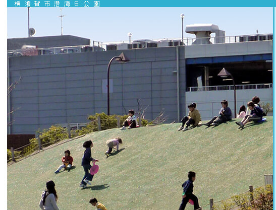 うみかぜ公園の芝すべり,ピクニック,公園,神奈川