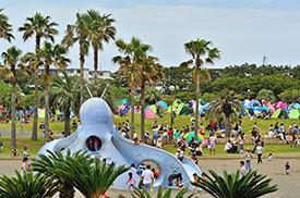 辻堂海浜公園の芝生広場,ピクニック,公園,神奈川