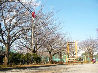 亀戸中央公園の児童コーナー,アスレチック,公園,