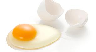 鶏卵,卵アレルギー,インフルエンザ,