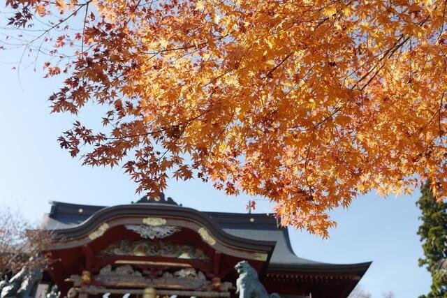 武蔵御嶽神社と紅葉,関東,紅葉,
